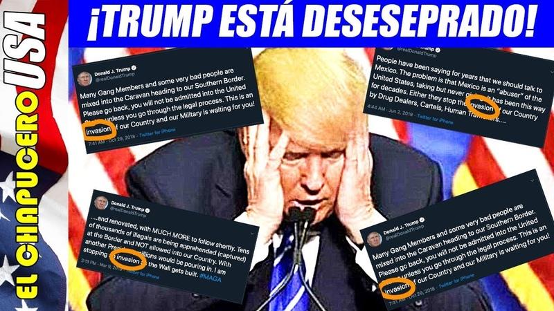 Desesperado Trump por Texas, empieza a borrar tuits que lo involucran en ataque
